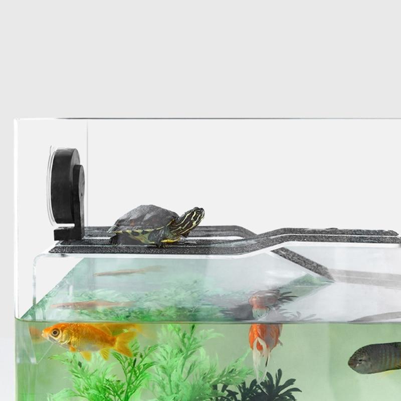 Pequena tartaruga plataforma basking estreito pendurado tartaruga