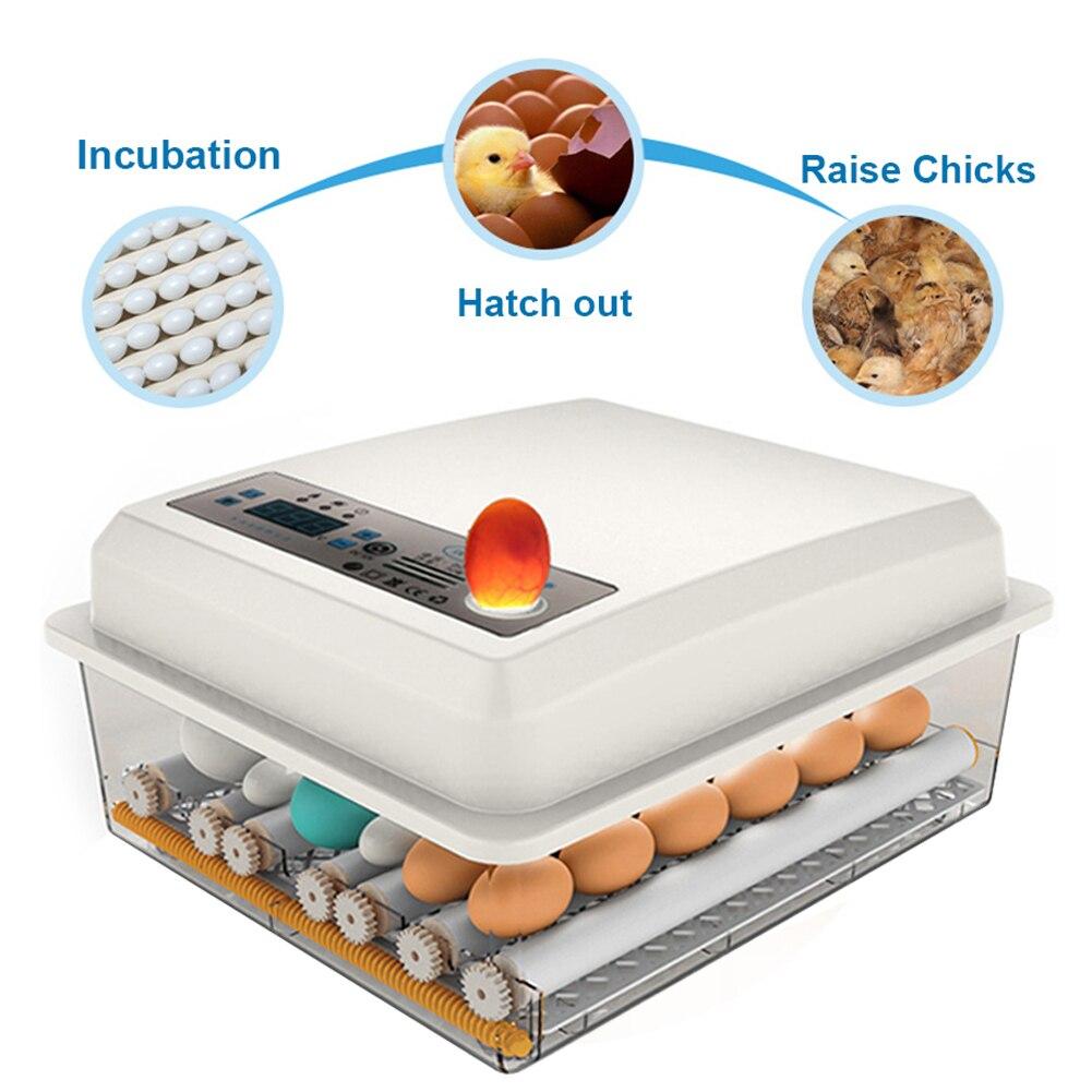 de baixo nível ruído abs para incubação