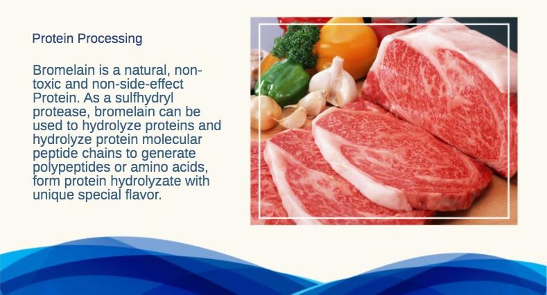 菠萝蛋白酶 详情页1.jpg