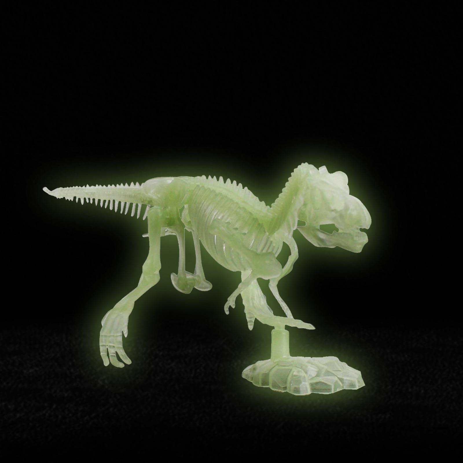 Ossos fluorescentes de dinossauro para halloween, modelo