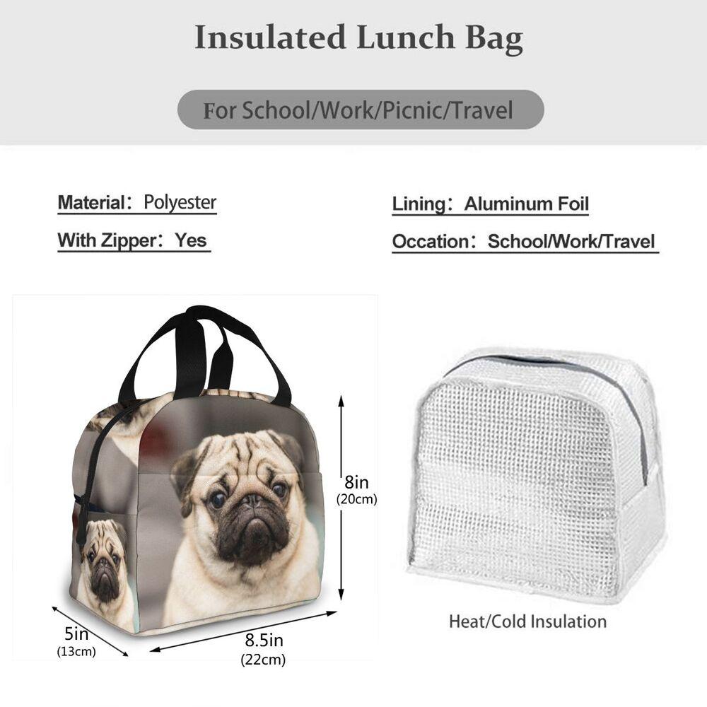 portátil isolado almoço saco comida térmica piquenique almoço sacos