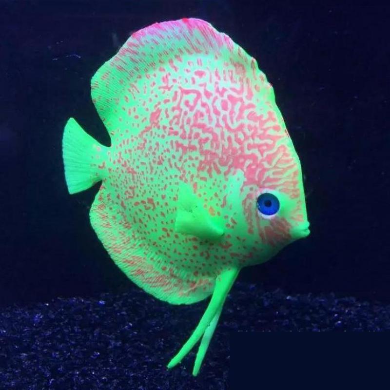 Perfect Silicone Discus Fish Tropical Fish Aquarium
