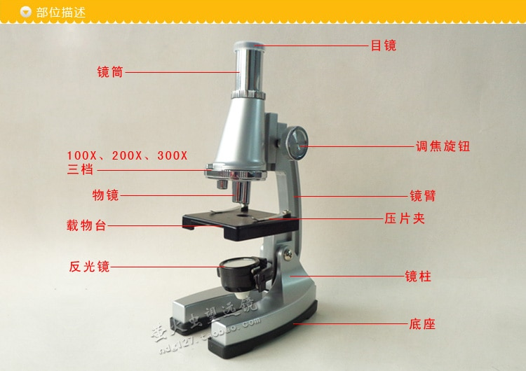 Christmas gift birthday gift 300X Children Microscope Kit Student Science Biological experiments Tools Educational Toys with LED