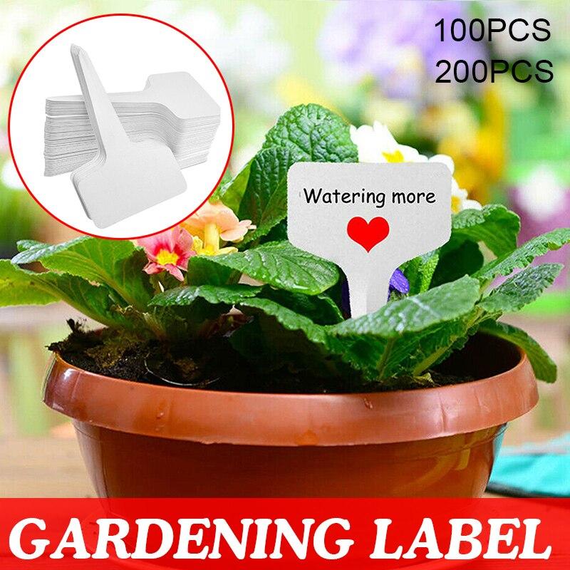100 200 pces pvc t-tipo plantas pote