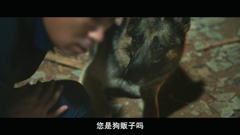 2020韩国喜剧《动物园先生》HD720P&HD1080P.韩语中字截图;jsessionid=zsaPVTxTPN00rxmDDEh6I8IbXyWm9AmQ54U2uxDv