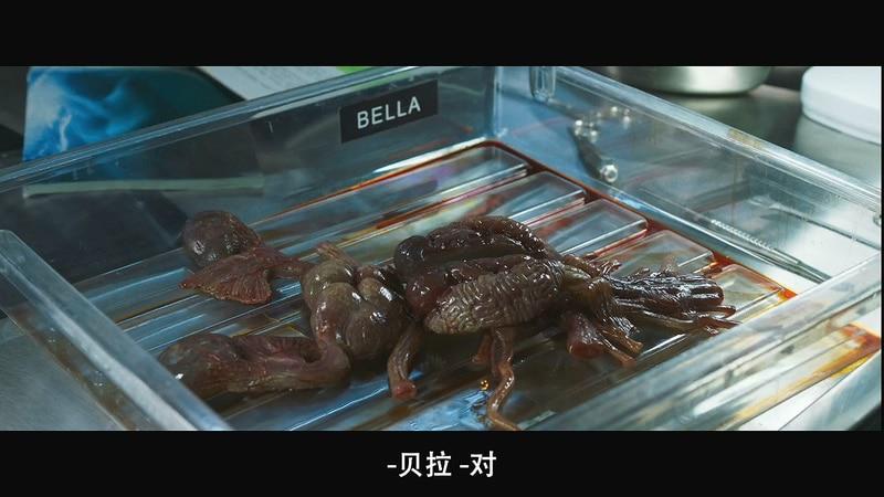 2020科幻恐怖《深海狂鲨3》HD720P&HD1080P.英语中字截图;jsessionid=CMFZnrRfc2jsjlI4B_HFsjKEaKECTSUGZoPyP8ho