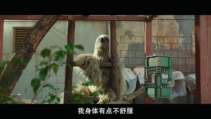 2020韩国喜剧《秘密动物园》HD720P&HD1080P.韩语中字截图;jsessionid=IyYAeI2Zln2LMyqm-tdPt9fkvfguB6r5dQ1QWq70
