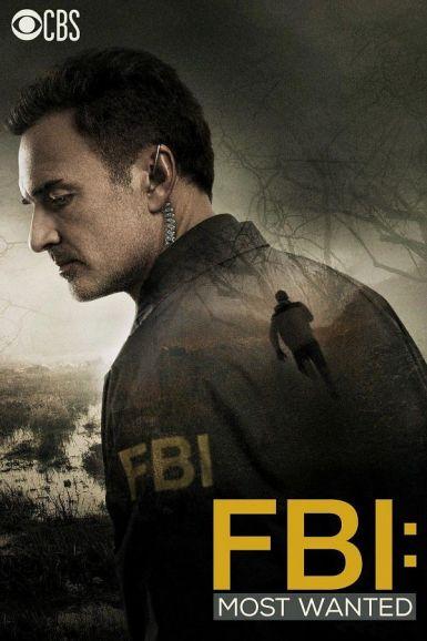 联邦调查局:通缉要犯 第一季