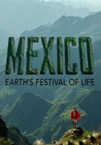墨西哥:地球生命的狂欢  2017.HD720P 迅雷下载